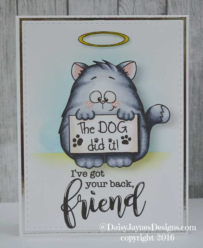 gsd-cat-with-sign-dt
